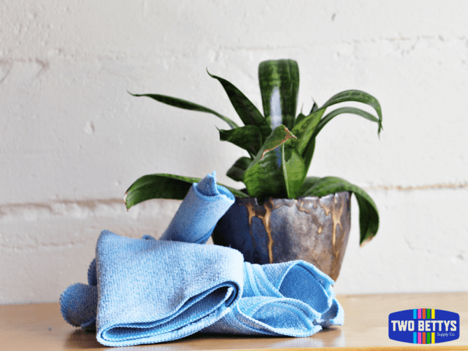 Two Bettys Supply Co blue, medium-size microfiber green cleaning cloths next to a plant